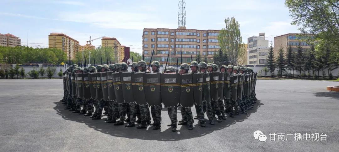甘南军分区:聚焦民兵训练转型 锻造新型后备劲旅
