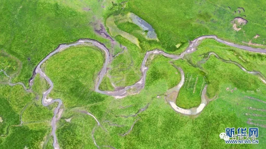 玛曲:高原湿地美